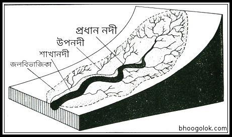 নদী অববাহিকা (River Basin)